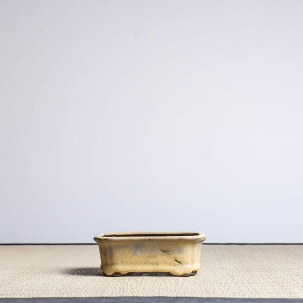 bmp16 1 IBUKI Hand Made Bonsai Pot by Mariusz Folda   Image of bmp16 1