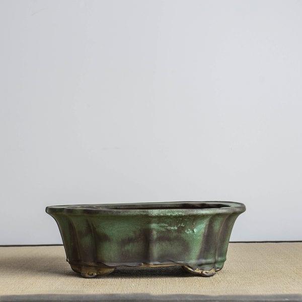 bpg123 1 IBUKI Hand Made Bonsai Pot by Mariusz Folda   Image of bpg123 1