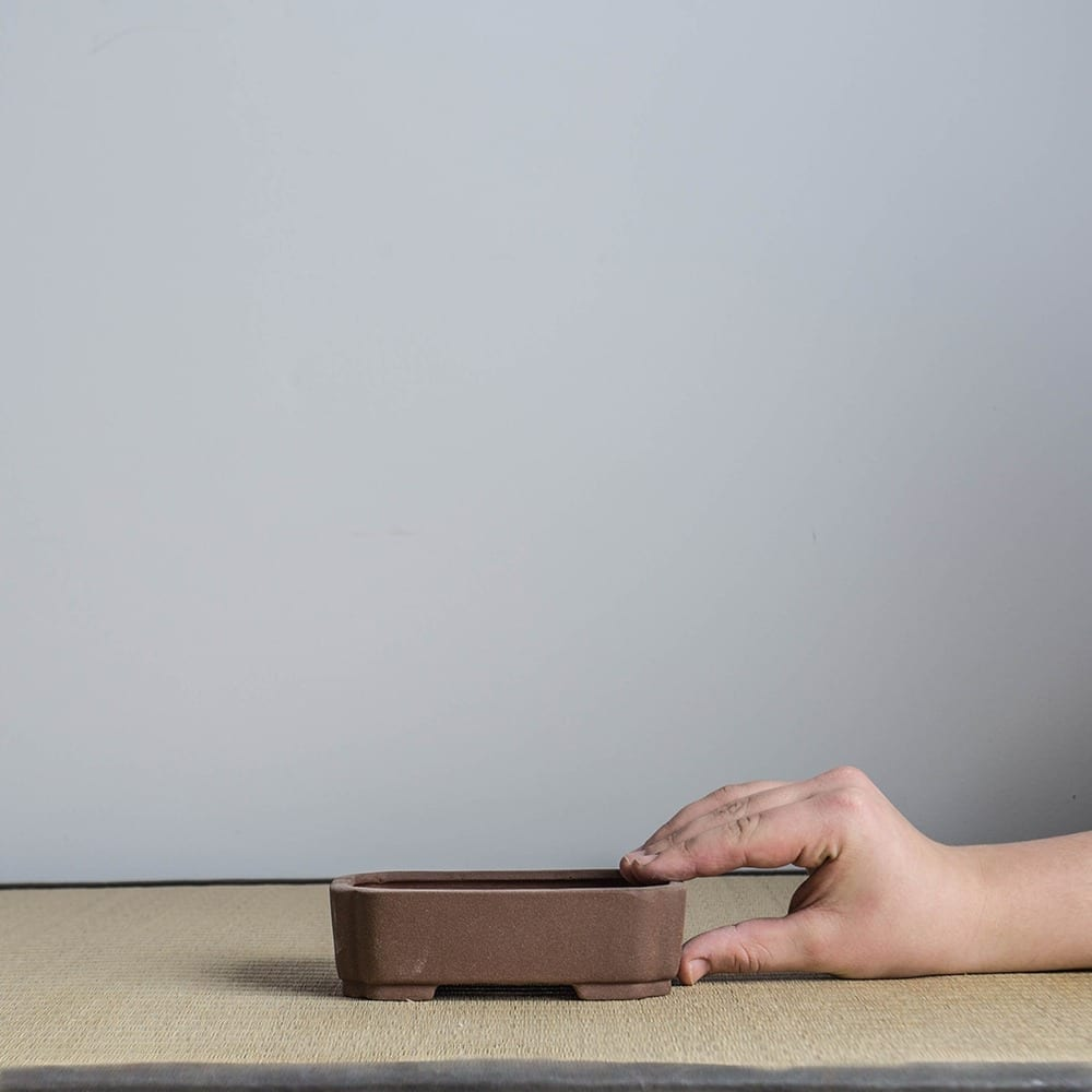 bpm21 2 IBUKI Hand Made Bonsai Pot by Mariusz Folda   Image of bpm21 2
