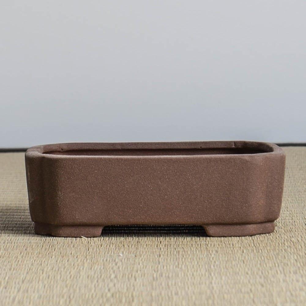 bpm21 6 IBUKI Hand Made Bonsai Pot by Mariusz Folda   Image of bpm21 6
