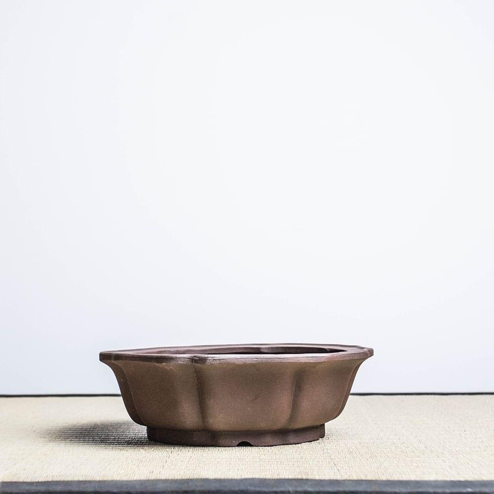 bpu89 1 1 IBUKI Hand Made Bonsai Pot by Mariusz Folda   Image of bpu89 1 1