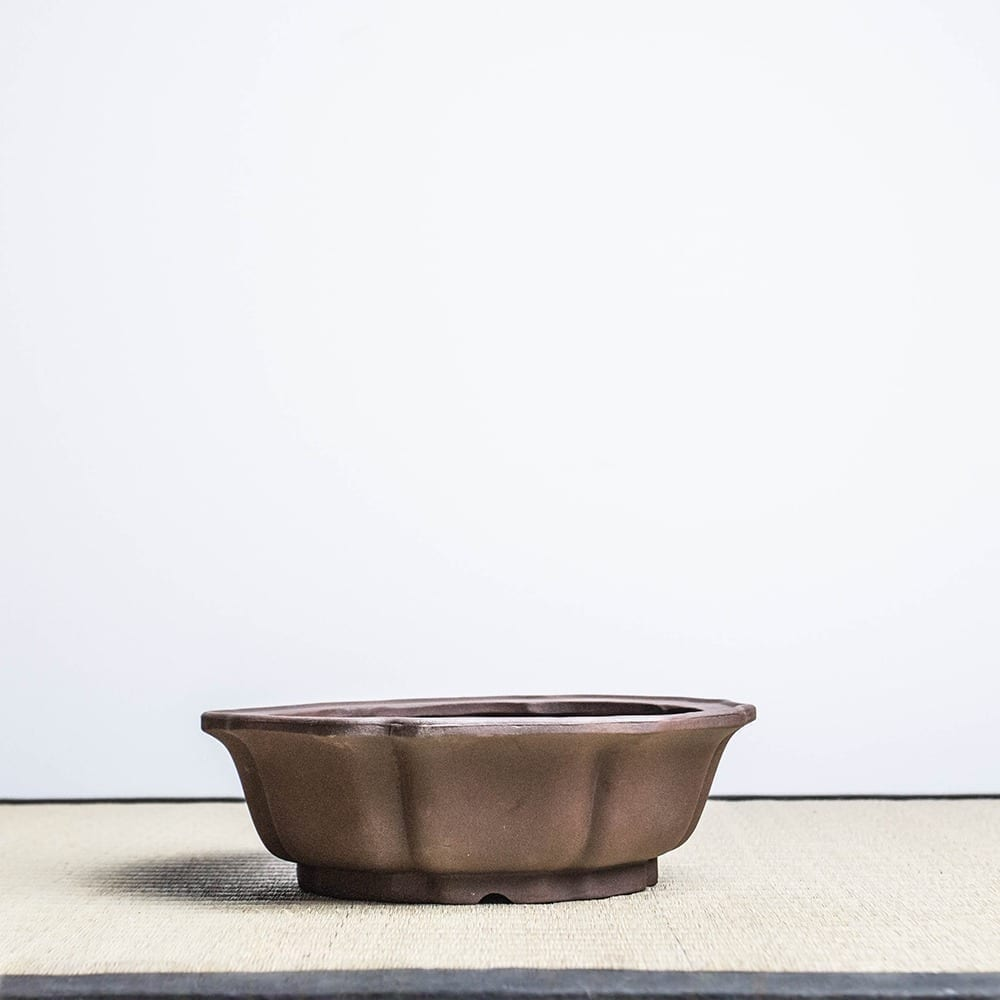 bpu89 1 IBUKI HAND MADE BONSAI POT BY MARIUSZ FOLDA   Image of bpu89 1