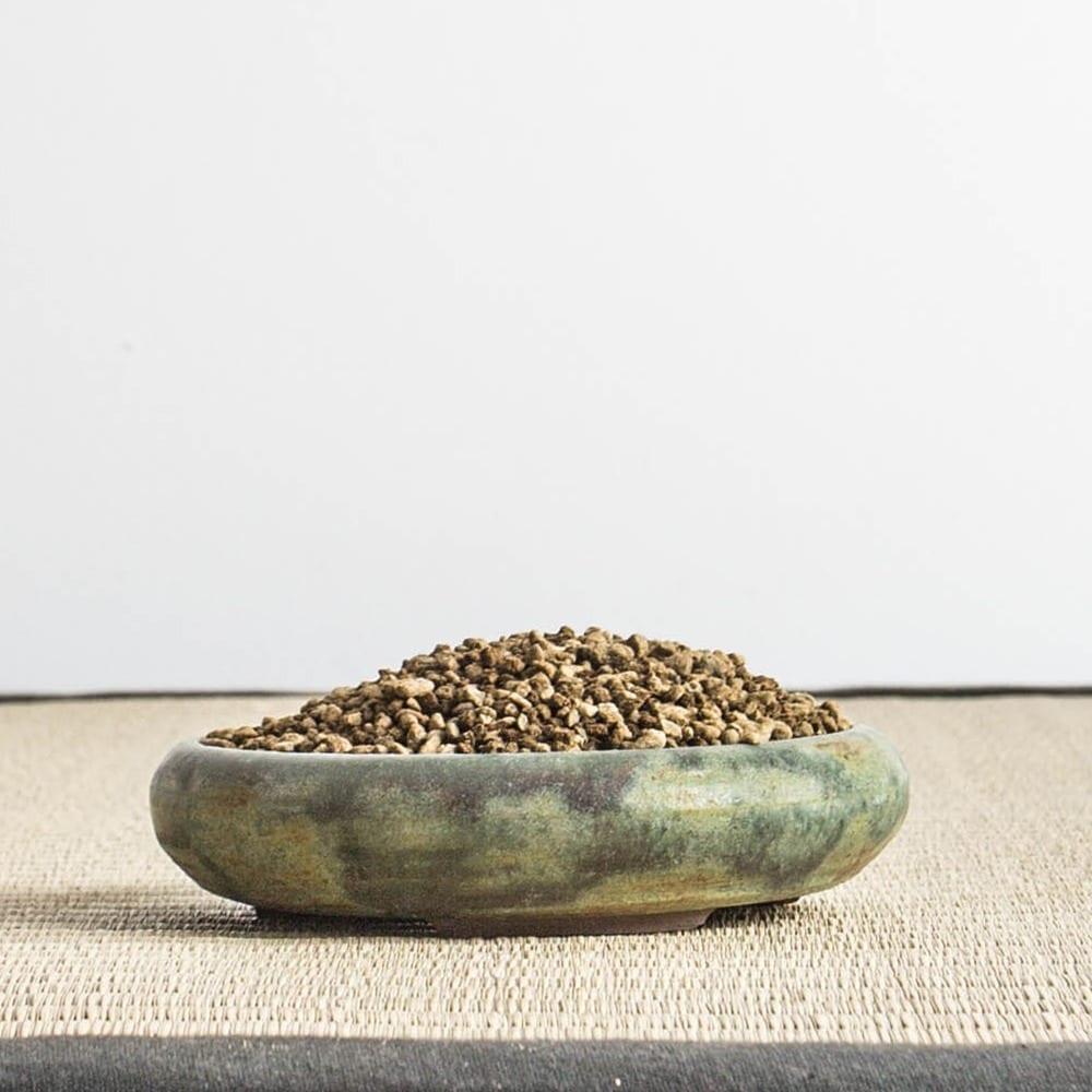 50akadama50pumice small2 MIX AKADAMA 50% / PUMICE (BIMS) 50% IBUKI Bonsai Sieved Substrate for needle trees 2.5 3   Image of 50akadama50pumice small2