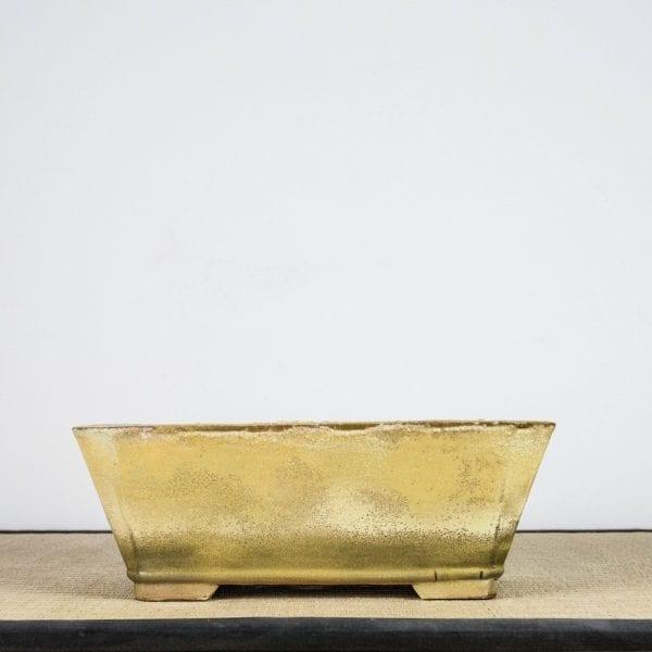 bpg128 1 IBUKI Hand Made Bonsai Pot by Mariusz Folda   Image of bpg128 1