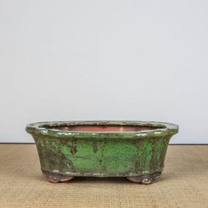 bpg150 1 300x300 IBUKI Hand Made Bonsai Pot by Mariusz Folda   Image of bpg150 1 300x300