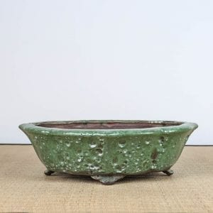 bpg155 1 300x300 IBUKI Hand Made Bonsai Pot by Mariusz Folda   Image of bpg155 1 300x300