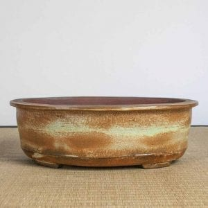 bpg165 1 1 300x300 IBUKI Hand Made Bonsai Pot by Mariusz Folda   Image of bpg165 1 1 300x300