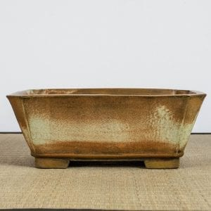 bpg166 1 1 300x300 IBUKI Hand Made Bonsai Pot by Mariusz Folda   Image of bpg166 1 1 300x300