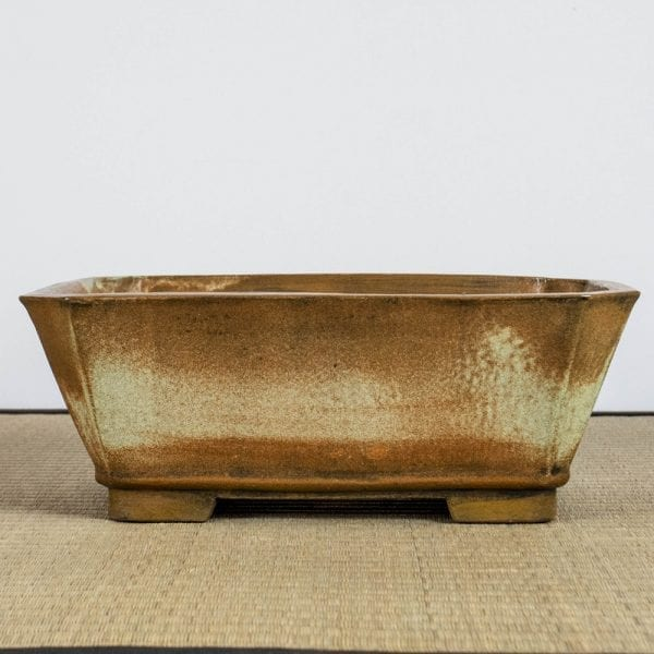bpg166 1 1 IBUKI Hand Made Bonsai Pot by Mariusz Folda   Image of bpg166 1 1