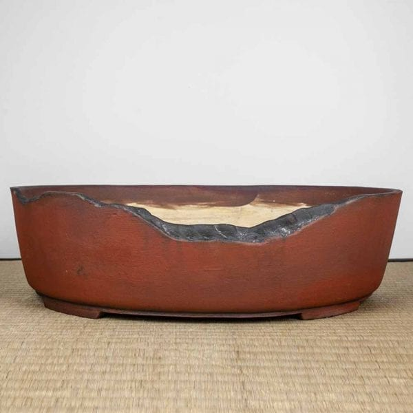 1 7 IBUKI Hand Made Bonsai Pot by Mariusz Folda   Image of 1 7