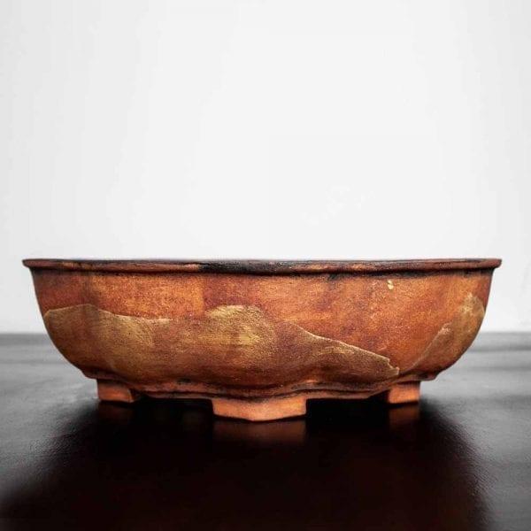 11 7 IBUKI Hand Made Bonsai Pot by Mariusz Folda   Image of 11 7