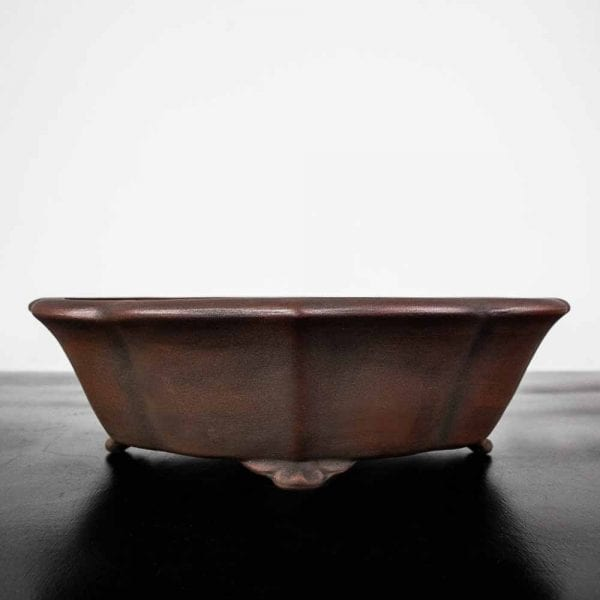 1 51 IBUKI Hand Made Bonsai Pot by Mariusz Folda   Image of 1 51