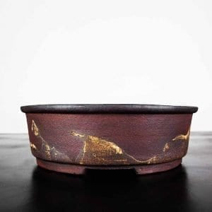 1 5 300x300 IBUKI Hand Made Bonsai Pot by Mariusz Folda   Image of 1 5 300x300