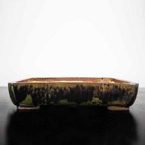 IBUKI Studio Bonsai & Ceramics Homepage