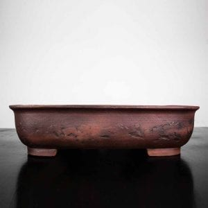 bonsai pot 1 41 300x300 WIRE CUTTERS   Knipex   Image of bonsai pot 1 41 300x300