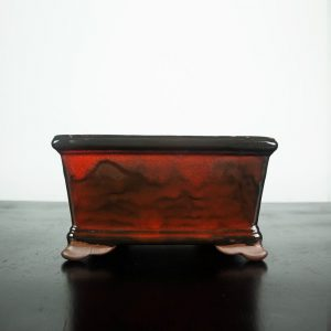 bonsai pot 1 13 300x300 WIRE CUTTERS   Knipex   Image of bonsai pot 1 13 300x300