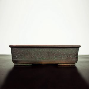 bonsai pot 1 2 300x300 WIRE CUTTERS   Knipex   Image of bonsai pot 1 2 300x300