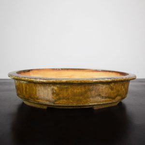 bonsai pot 1 11 300x300 WIRE CUTTERS   Knipex   Image of bonsai pot 1 11 300x300
