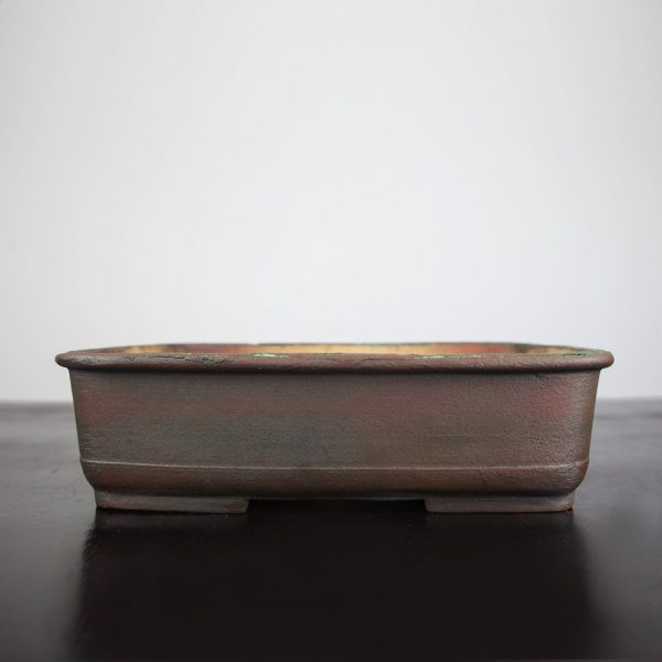 bonsai pot 1 5 IBUKI HAND MADE BONSAI POT BY MARIUSZ FOLDA   Image of bonsai pot 1 5