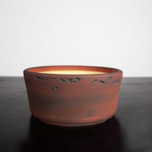 bonsai pot 1 13 300x300 WIRE CUTTERS   Knipex   Image of bonsai pot 1 13 300x300