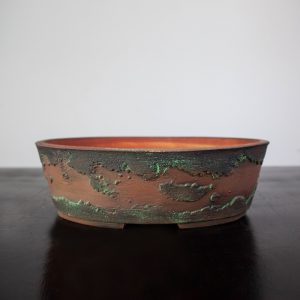 bonsai pot 1 17 300x300 WIRE CUTTERS   Knipex   Image of bonsai pot 1 17 300x300