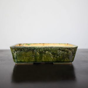 bonsai pot 1 19 300x300 WIRE CUTTERS   Knipex   Image of bonsai pot 1 19 300x300