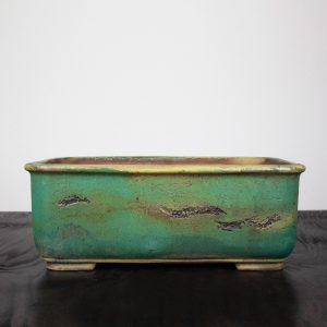 bonsai pot 2 15 300x300 WIRE CUTTERS   Knipex   Image of bonsai pot 2 15 300x300