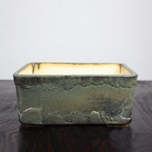 bonsai pot 1 28 300x300 WIRE CUTTERS   Knipex   Image of bonsai pot 1 28 300x300