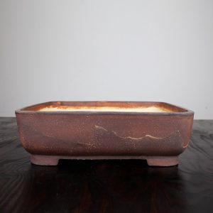 bonsai pot 1 30 300x300 WIRE CUTTERS   Knipex   Image of bonsai pot 1 30 300x300