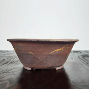 bonsai pot 1 4 300x300 WIRE CUTTERS   Knipex   Image of bonsai pot 1 4 300x300