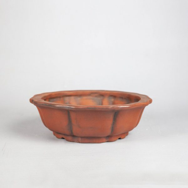 bonsai pot 1 25 IBUKI Hand Made Bonsai Pot by Mariusz Folda   Image of bonsai pot 1 25