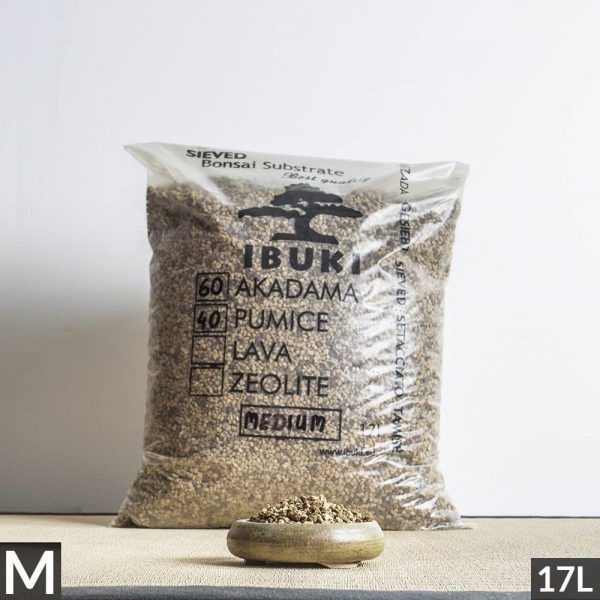 60akadama50pumice medium1 1 2 MIX AKADAMA 60% / PUMICE (BIMS) 40% IBUKI Bonsai Sieved Substrate for leaf trees 4.5 5mm   Image of 60akadama50pumice medium1 1 2