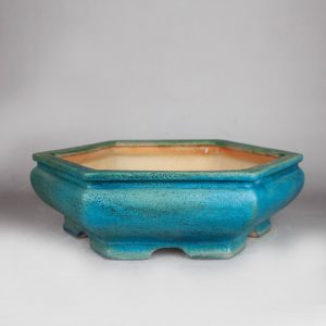 bonsai pot 1 18 300x300 Homepage   Image of bonsai pot 1 18 300x300