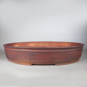 bonsai pot 1 29 300x300 Homepage   Image of bonsai pot 1 29 300x300