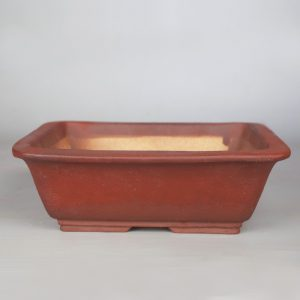 bonsai pot 1 1 300x300 Homepage   Image of bonsai pot 1 1 300x300
